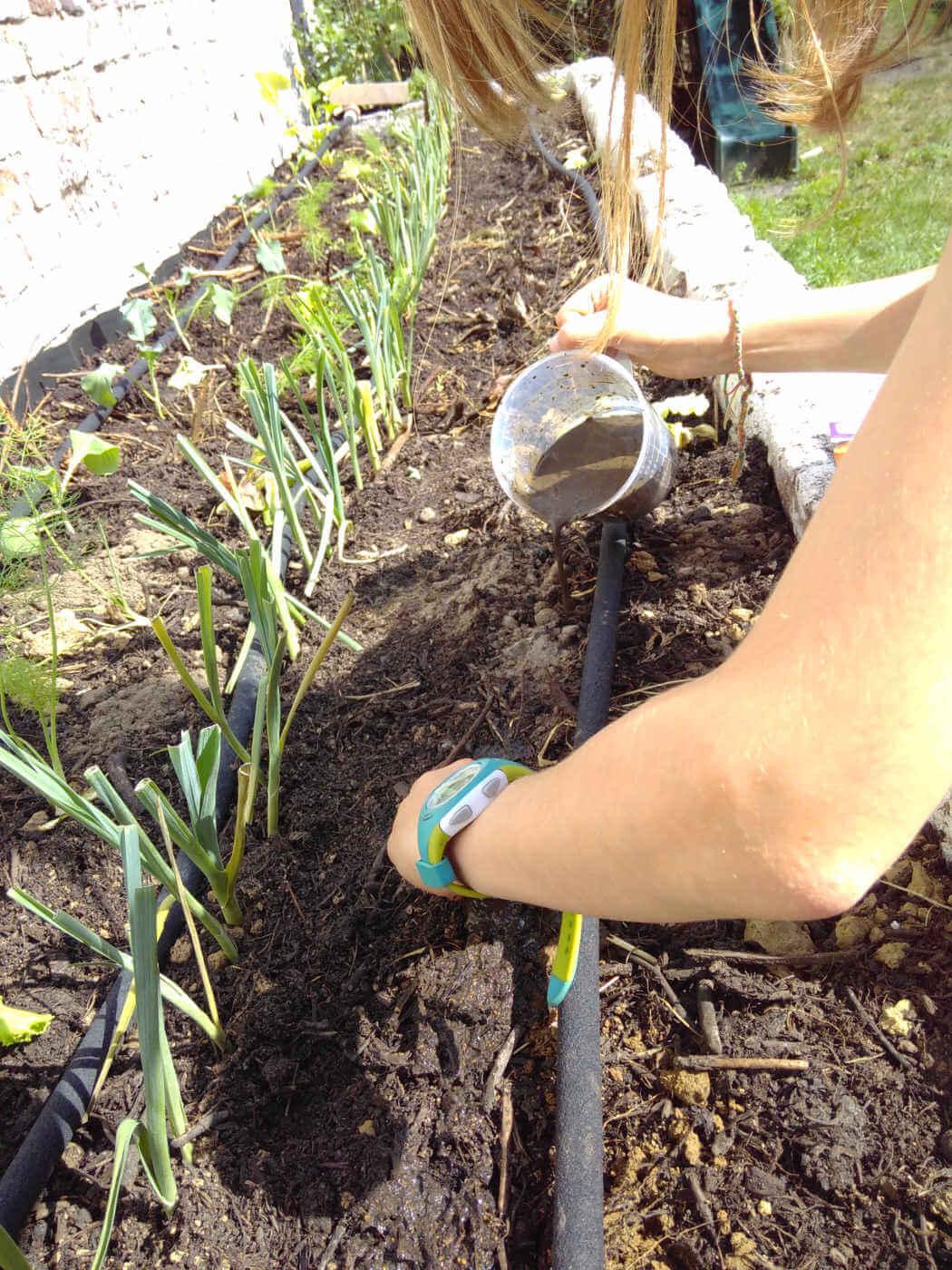 bac test sur compost
